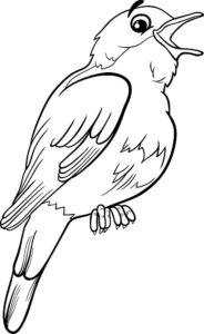 Птицы соловей картинки раскраски (3)