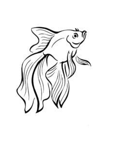 Рыбки картинки раскраски (12)
