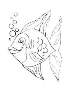 Рыбки картинки раскраски (3)