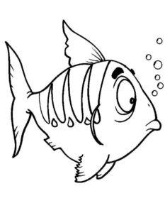 Рыбки картинки раскраски (5)