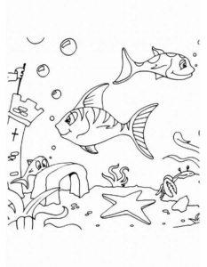 Рыбки картинки раскраски (9)