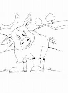 Свинья картинки раскраски (12)