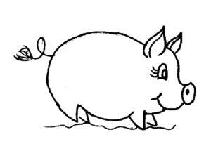 Свинья картинки раскраски (14)