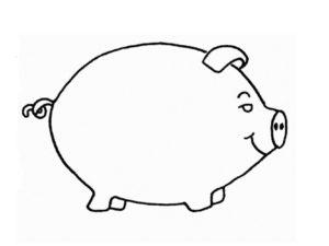 Свинья картинки раскраски (2)