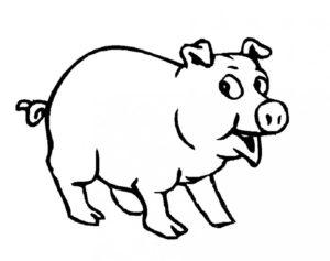 Свинья картинки раскраски (24)