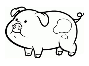 Свинья картинки раскраски (25)