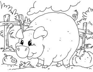 Свинья картинки раскраски (33)
