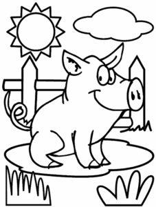 Свинья картинки раскраски (34)