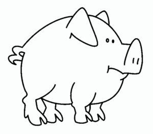 Свинья картинки раскраски (55)