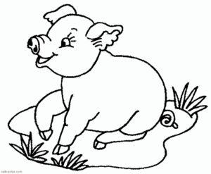 Свинья картинки раскраски (56)