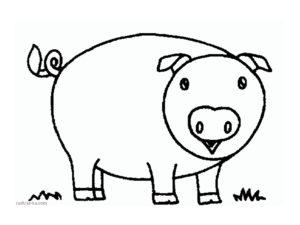 Свинья картинки раскраски (57)