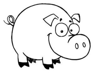Свинья картинки раскраски (62)