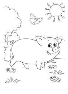 Свинья картинки раскраски (70)