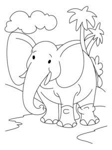 Слон картинки раскраски (17)