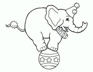 Слон картинки раскраски (21)