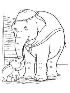 Слон картинки раскраски (22)