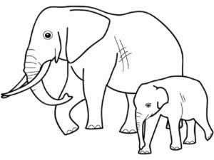 Слон картинки раскраски (25)