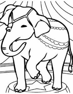 Слон картинки раскраски (32)