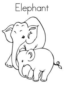 Слон картинки раскраски (36)