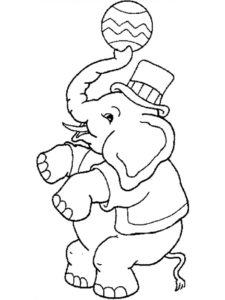 Слон картинки раскраски (39)