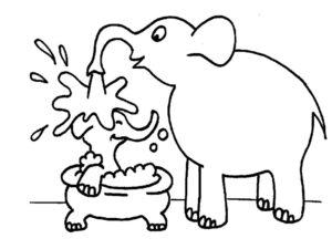 Слон картинки раскраски (7)