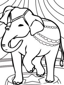 Слон картинки раскраски (8)