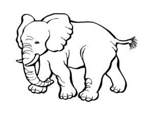Слон картинки раскраски (9)