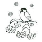 Снегирь картинки раскраски (10)