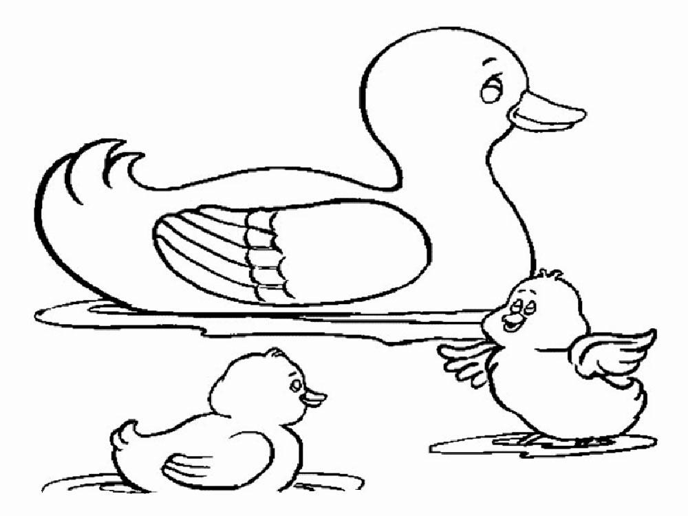 Картинка для детей утка раскраска