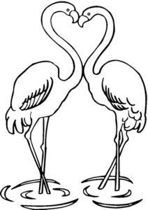 Фламинго картинки раскраски (1)