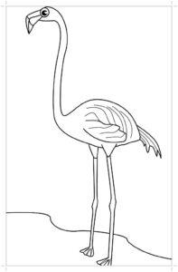 Фламинго картинки раскраски (22)