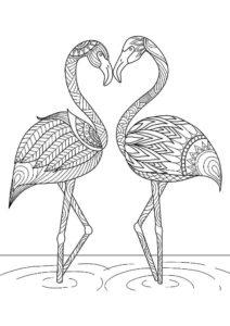 Фламинго картинки раскраски (36)