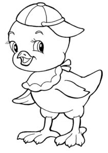 Цыпленок картинки раскраски (1)