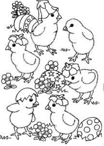 Цыпленок картинки раскраски (2)