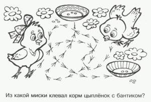 Цыпленок картинки раскраски (21)