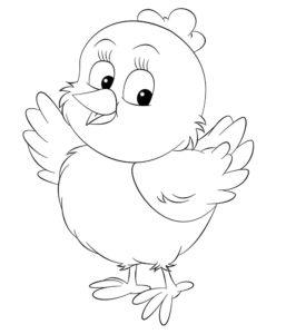 Цыпленок картинки раскраски (23)