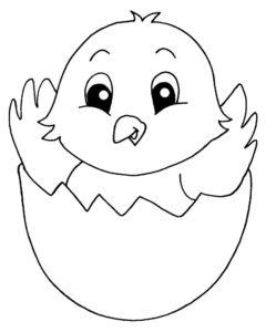 Цыпленок картинки раскраски (24)