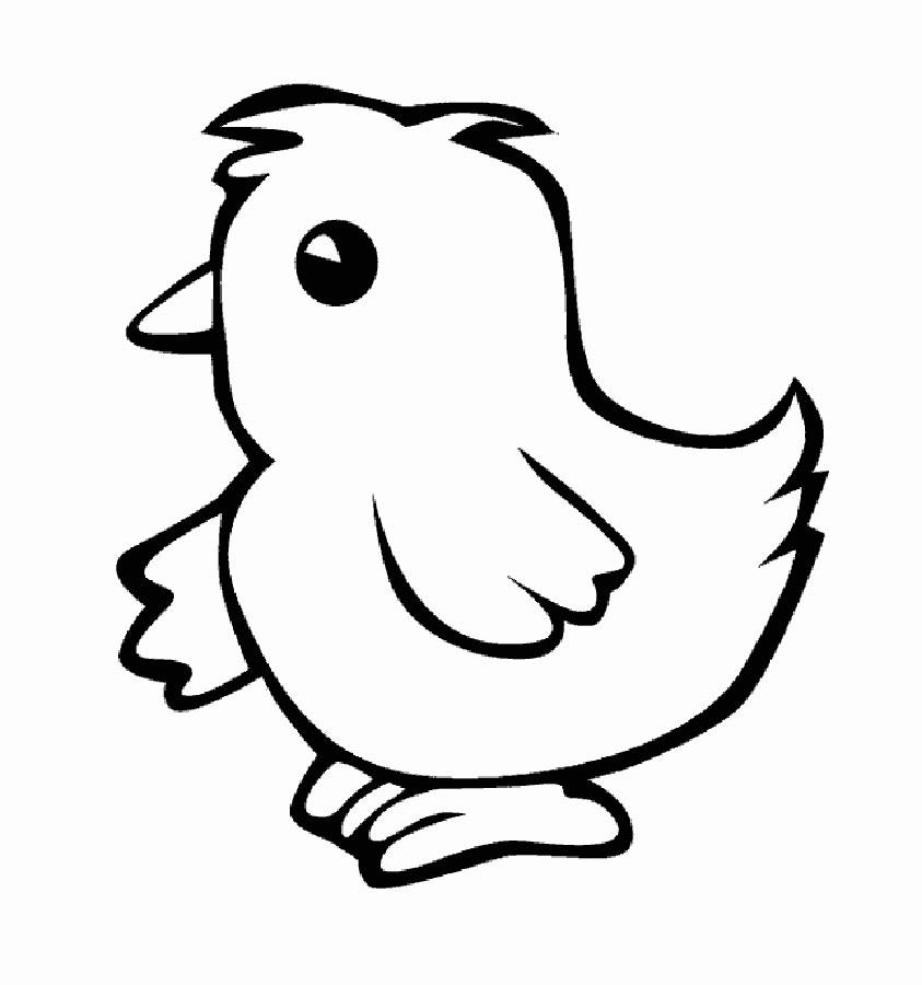Картинка цыпленок черно-белый