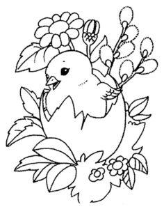 -картинки-раскраски-41-236x300 Цыпленок