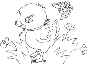 -картинки-раскраски-49-300x220 Цыпленок