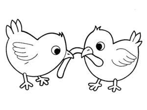 -картинки-раскраски-54-300x225 Цыпленок