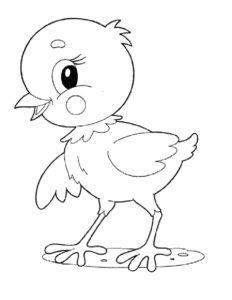 Цыпленок картинки раскраски (6)