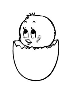 -картинки-раскраски-61-233x300 Цыпленок