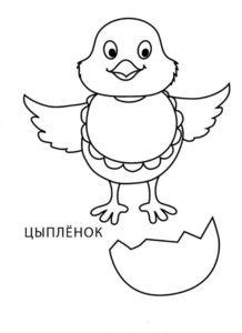 -картинки-раскраски-69-218x300 Цыпленок