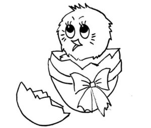 Цыпленок картинки раскраски (9)