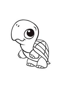 Черепаха картинки раскраски (12)