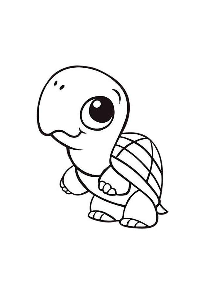 -картинки-раскраски-12 Черепаха картинки раскраски (12)