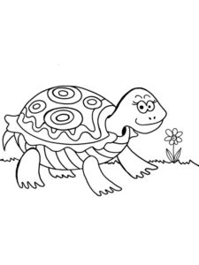 Черепаха картинки раскраски (13)