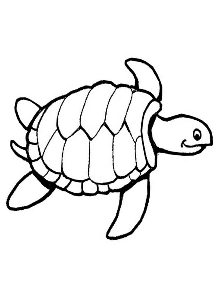 Черепаха картинки раскраски (16)