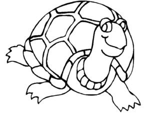 Черепаха картинки раскраски (17)